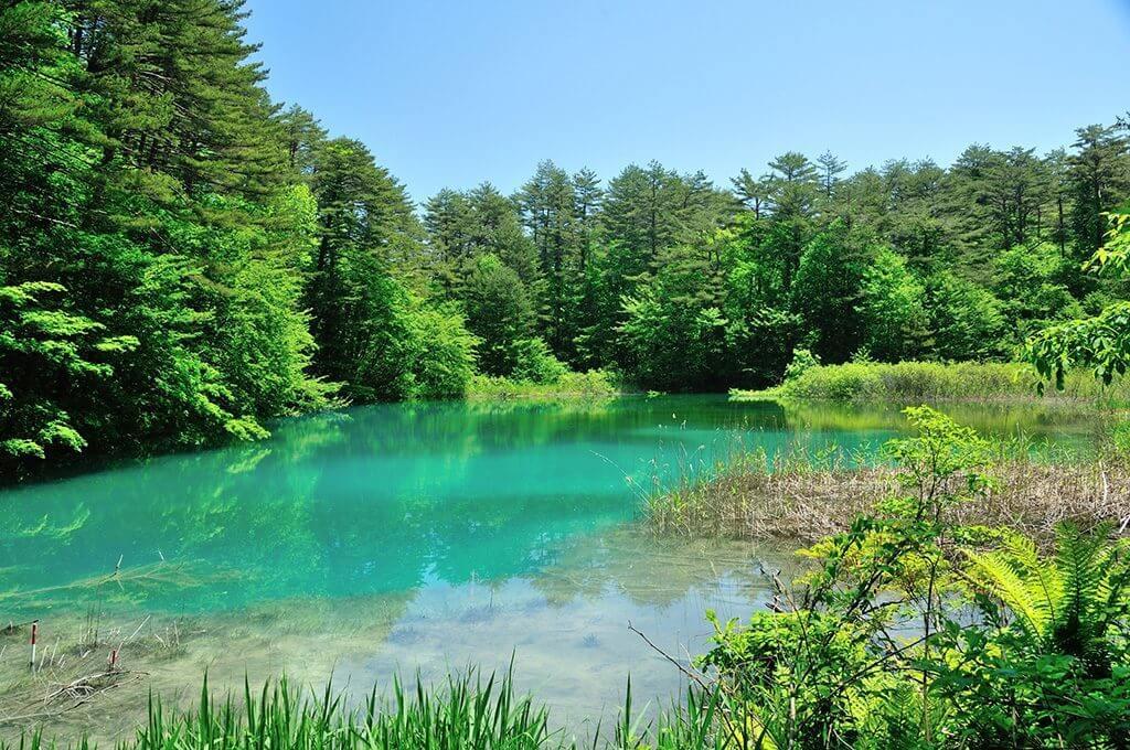 福島の裏磐梯にある五色沼